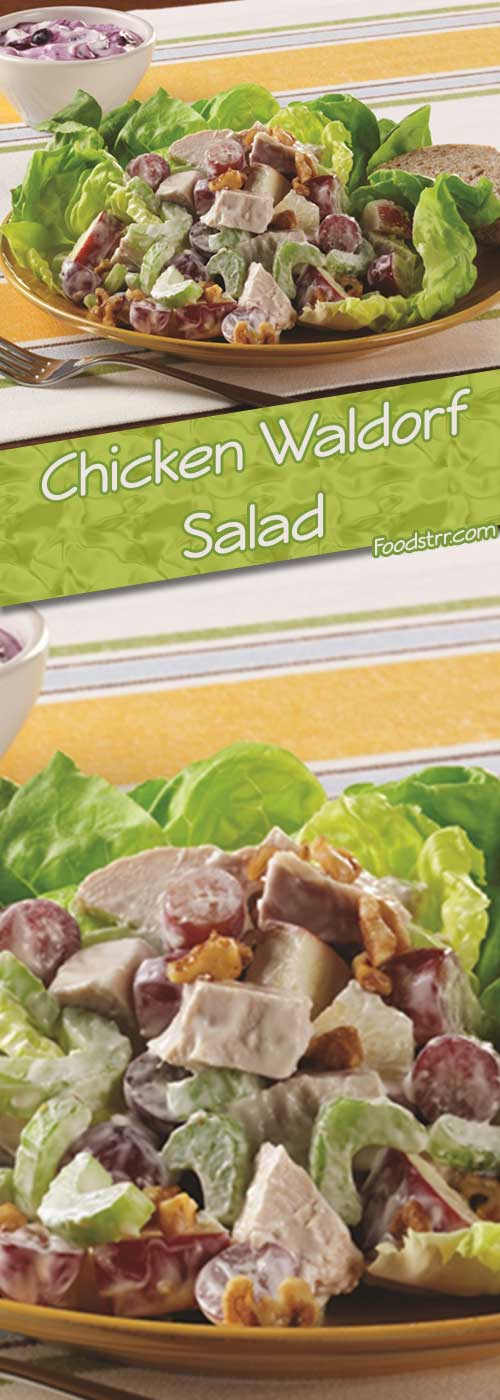 Recipe for Chicken Waldorf Salad - This recipe is a perfect way to use leftover chicken. With just 15 minutes of prep time, this recipe will be ready in a snap.
